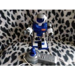 Sétáló robot (24)