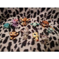 Littlest pet shop figura csomag lps (75)