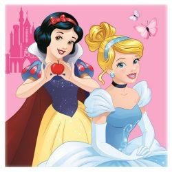 Disney Hercegnős arctörlő, kéztörlő