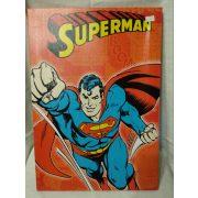 Superman műanyag kép (432)