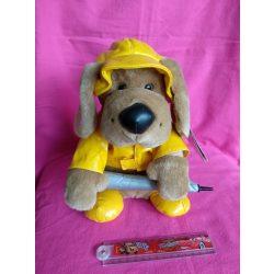 Éneklő kutya - ének az esőben